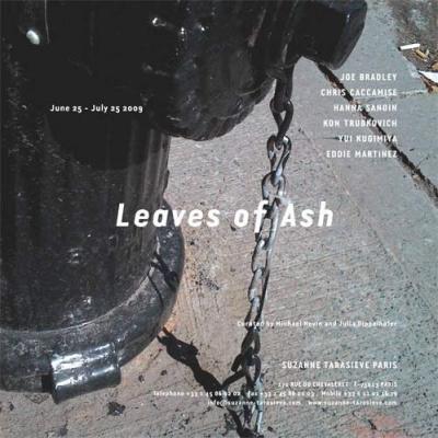 leaves fo ash