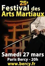 Festival des Arts Martiaux, 25ème édition, Bercy, Sports, Paris