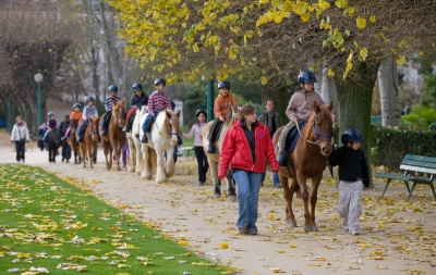 Cheval dans la ville, Parc de Choisy, Equitation, Sport, Paris