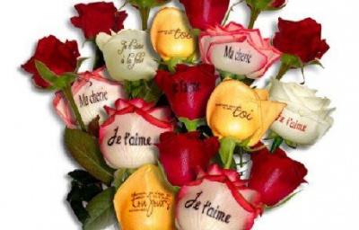 Saint valentin 2010 des messages d 39 amour originaux - Message original saint valentin ...