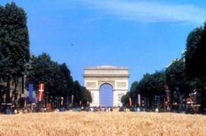 La Grande Moisson Champs-élysées Nature Capitale