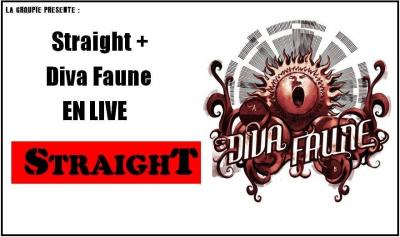 Straight Straight + Diva Faune