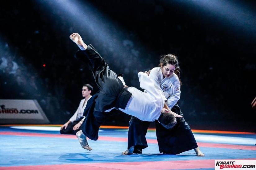 Le festival des arts martiaux 2018 paris invitations for Art martiaux