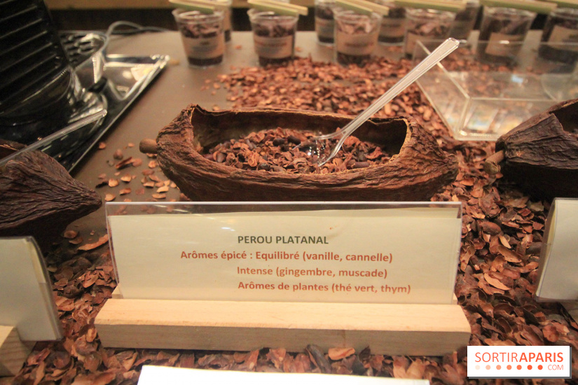 Salon du chocolat 2017 paris programme et d fil des for Salon du patrimoine 2017