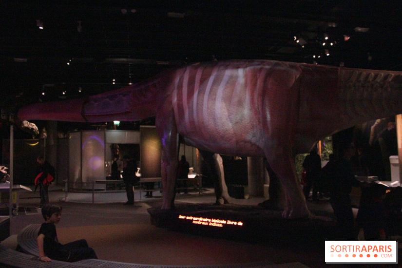 Dinosaure la vie en grand au mus um du jardin des plantes - Exposition dinosaures jardin des plantes ...
