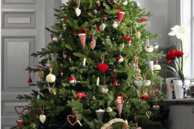 vente sapin noel ikea 2018 Les Sapins de Noël et Saumons Ikea 2017   Sortiraparis.com vente sapin noel ikea 2018