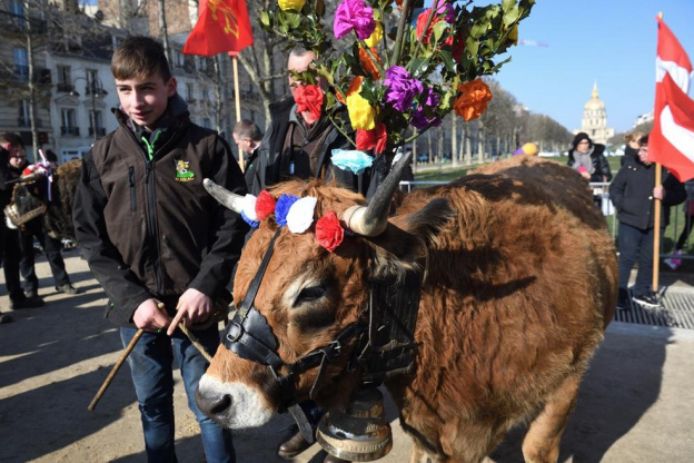 A Transhumance In Paris Buttes Chaumont For The International