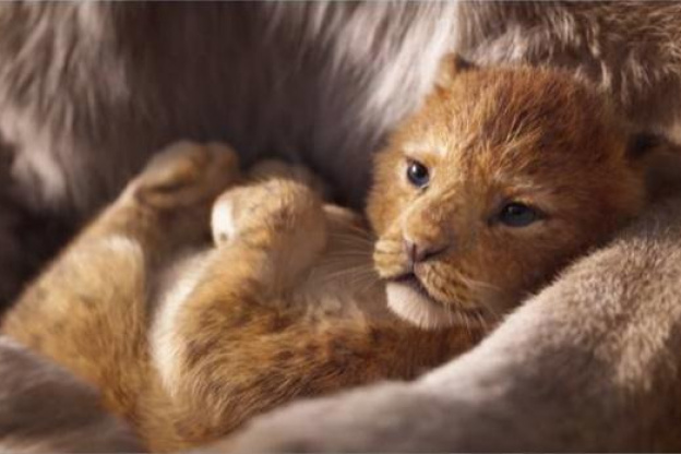 the lion king reboot 2019  discover the trailer