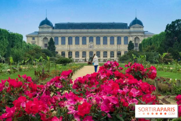 La Fête de la Science 2018 au Muséum - Jardin des Plantes ...