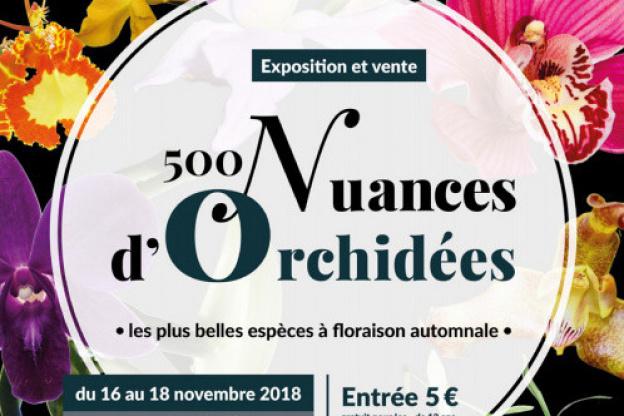 Exposition-vente d\'orchidées au Parc Floral de Paris - Sortiraparis.com
