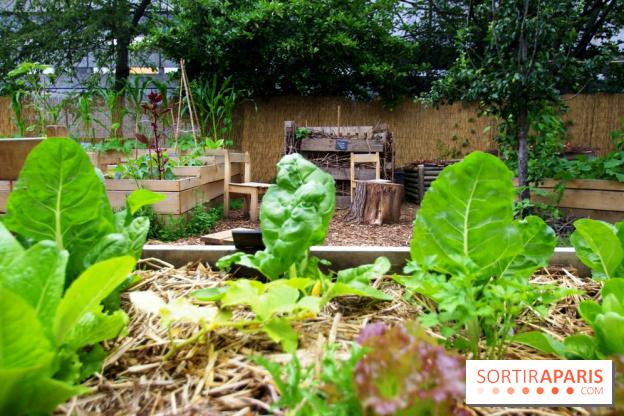 Jardin21 : retour du lieu de vie au sein d\'une friche verdoyante et ...