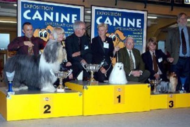 Un salon international du chien porte de versailles - Salon des animaux porte de versailles ...