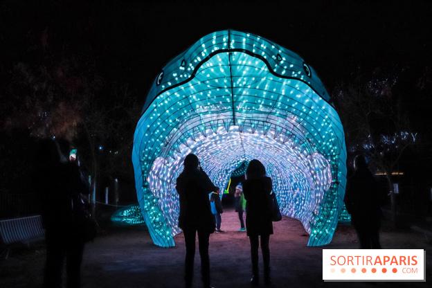 Espèces en voie d\'Illumination, le festival des lumières au Jardin ...