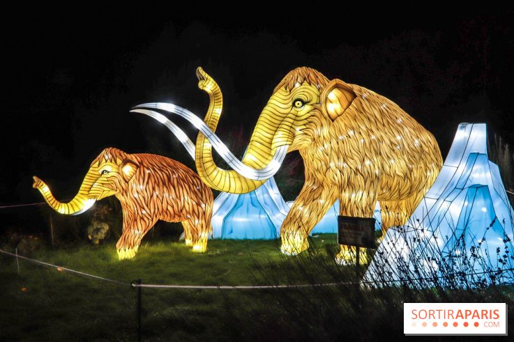 Esp U00e8ces En Voie D U0026 39 Illumination  Le Festival Des Lumi U00e8res