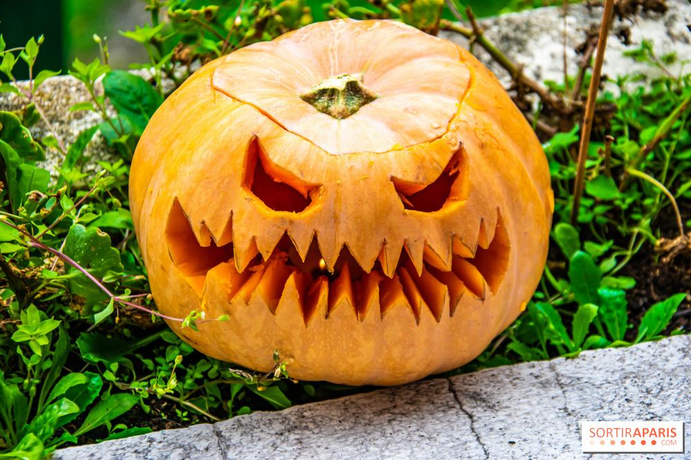 Bouche Citrouille Halloween.Halloween 2020 Comment Creuser Sa Citrouille Le Tuto Sortiraparis Com