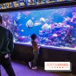 L'Aquarium de la Porte Dorée se renouvelle