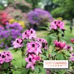 L'Arboretum de Versailles-Chevreloup se développe
