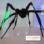Araignées, Lucioles et Papillons au Musée en Herbe : nos photos