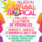 Festival : le Village du Carnaval Tropical