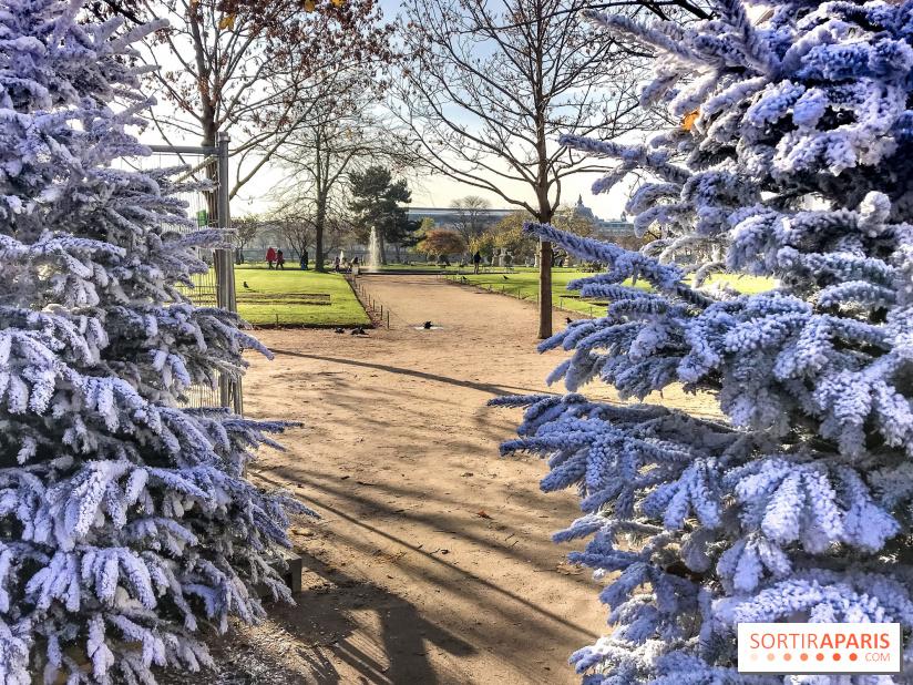 Jardin Des Tuileries Noel