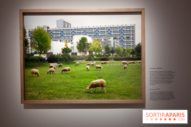 Photographier Paris à l'Hôtel de Ville