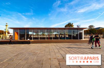 fiac 2018 26 oeuvres au jardin des tuileries et place de la concorde. Black Bedroom Furniture Sets. Home Design Ideas