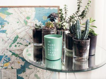 the blond cactus un bar v g tal insolite et vintage paris. Black Bedroom Furniture Sets. Home Design Ideas