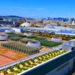 A la découverte de la plus grande ferme urbaine d'Europe !