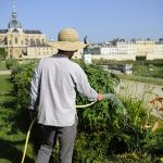 Dîners gastronomiques au Potager du Roi à Versailles