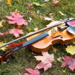 Festival Classique au Vert 2021 : le programme des concerts gratuits au Parc Floral de Paris