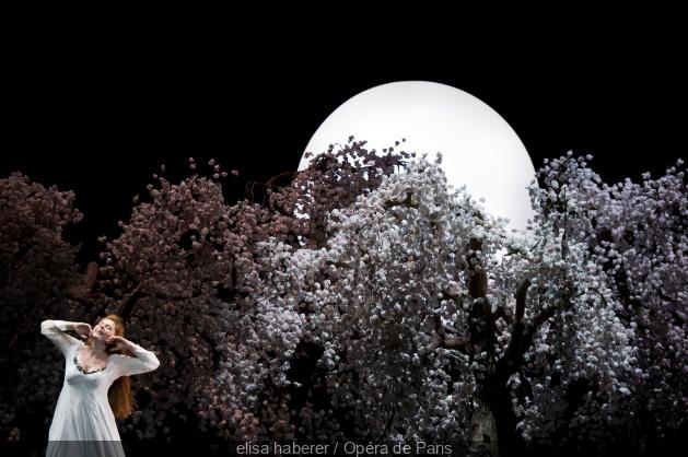 Cherry Blossoms datant Promo Code 2014 Studenten datant de Louvain