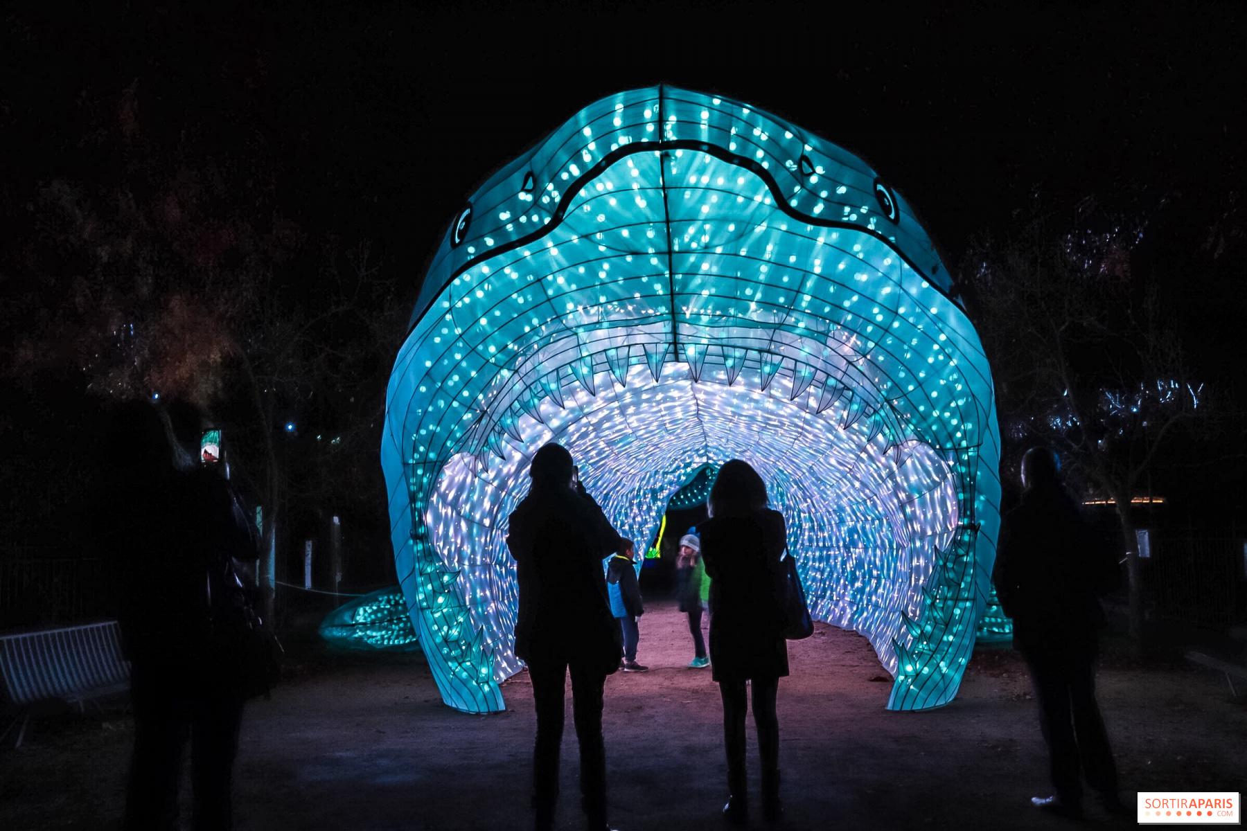 Océan en voie d\'illumination, Jardin des Plantes light ...