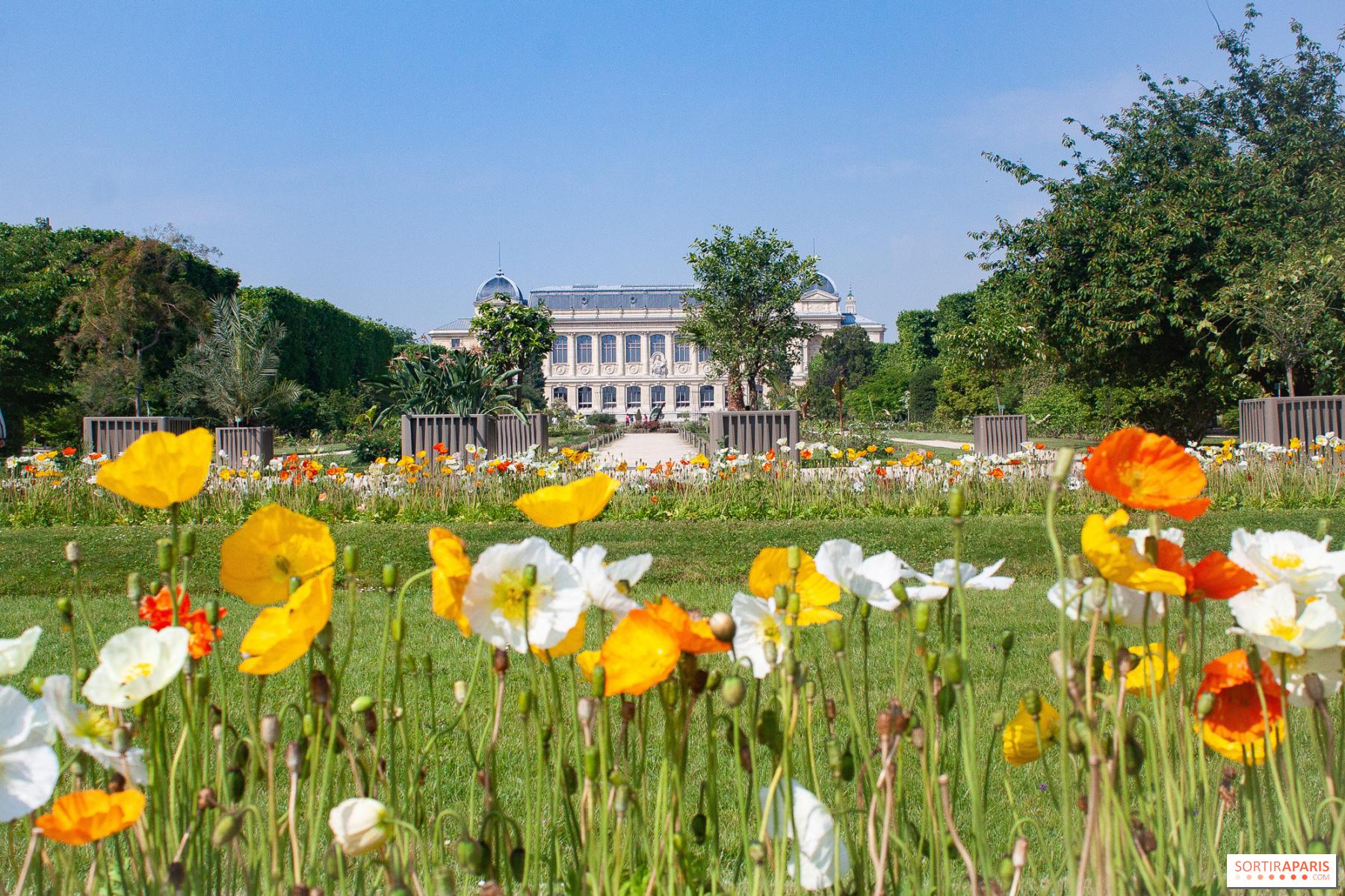 Quoi Planter En Octobre la fête de la nature 2020 // reportée en octobre