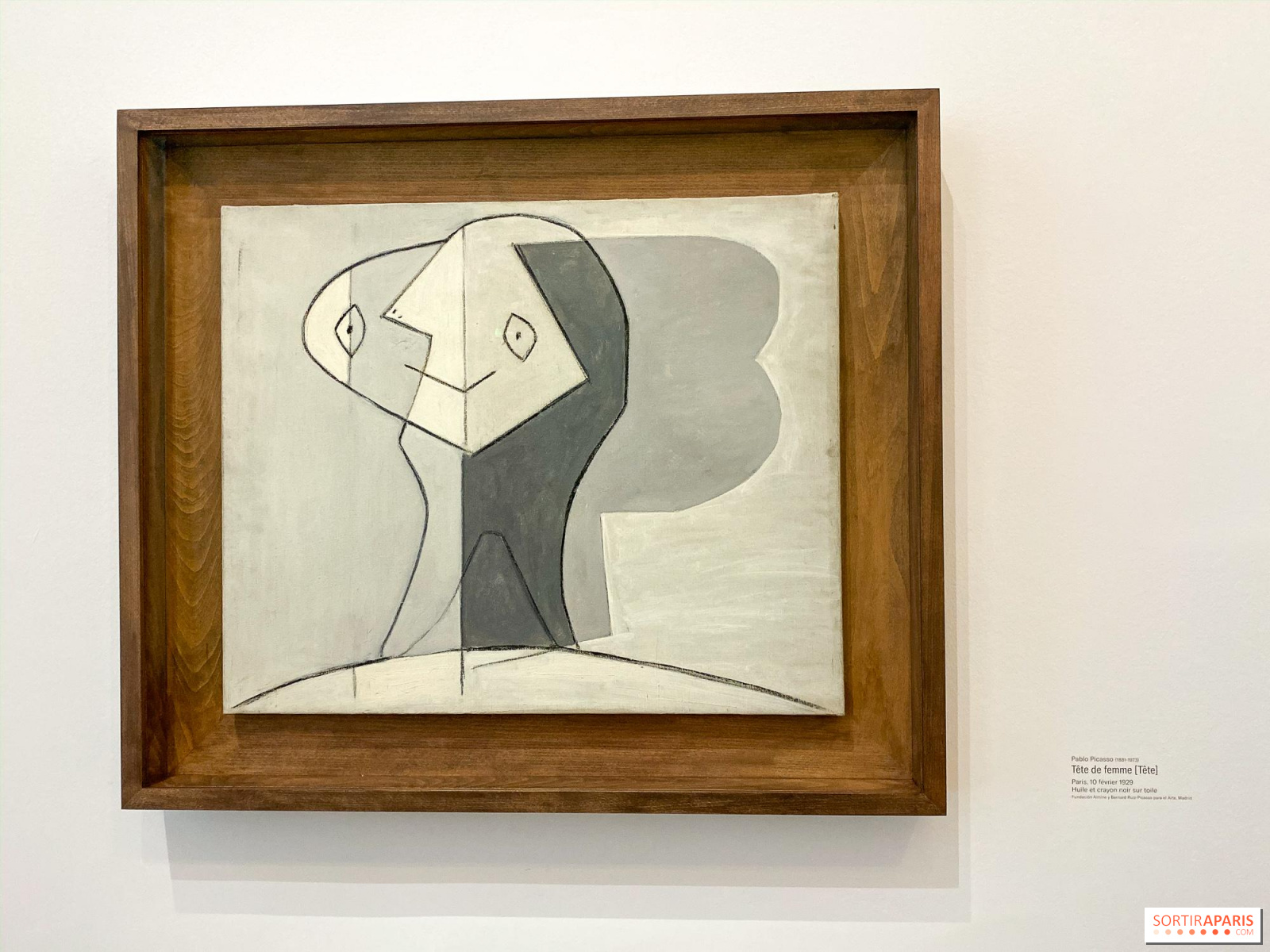 Picasso Tableaux Magiques Au Musee Picasso Photos Sortiraparis Com