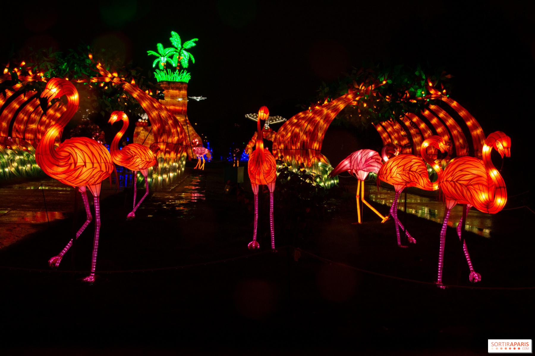 Deco De Noel Dans Le Jardin océan en voie d'illumination, jardin des plantes light