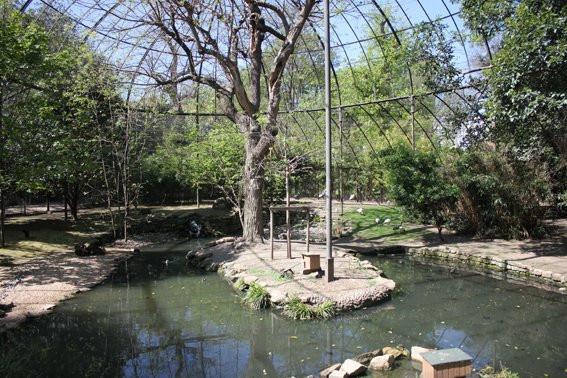 Photo la m nagerie du jardin des plantes la m nagerie du for Restaurant jardin des plantes paris