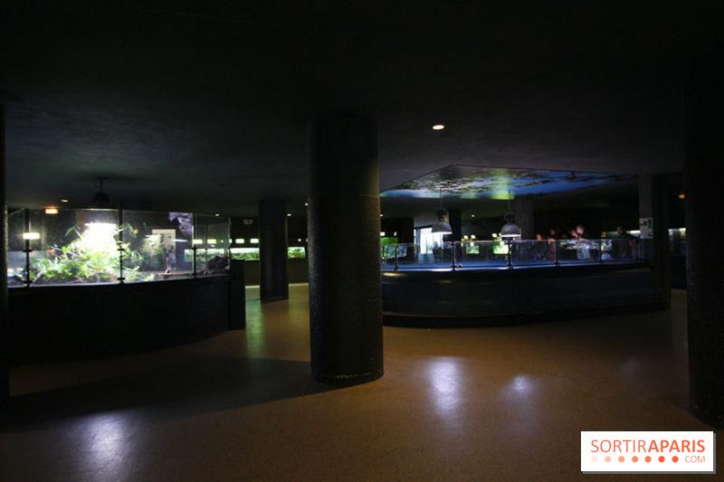 photo 3 aquarium de la porte dor 233 e 224