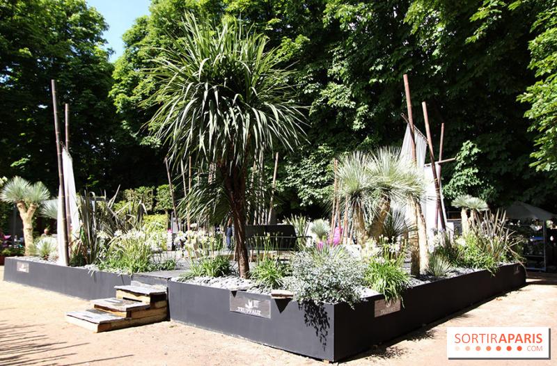 Photo 42 jardins jardin aux tuileries 2014 for Jardin aux tuileries