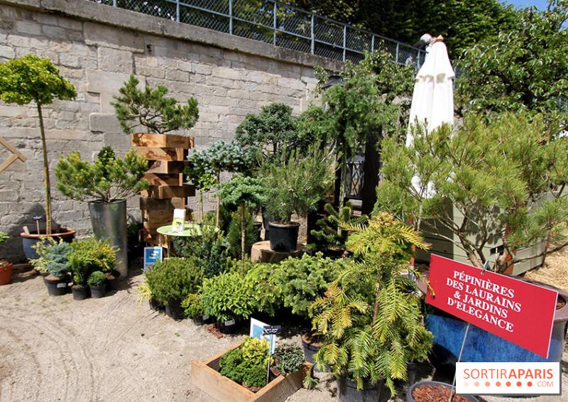 Photo 44 jardins jardin aux tuileries 2014 for Jardin aux tuileries