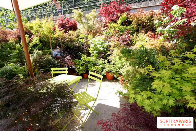 Photo 2 jardins jardin 2015 aux tuileries for Jardin aux tuileries