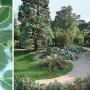 Rendez-vous aux jardins 2013 au Jardin des Plantes du Muséum